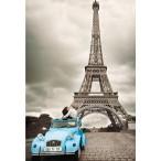 14845 Puzzle Color y B/N Torre Eiffel, Paris 500 piezas