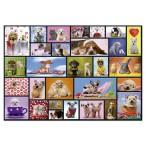 Puzzle Momentos Compartidos 1000 piezas